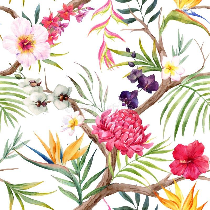 Modèle floral tropical de vecteur d'aquarelle illustration stock