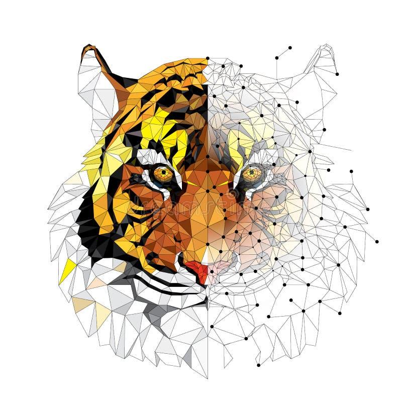 Modèle géométrique de bas tigre de polygone - dirigez l'illustration photographie stock