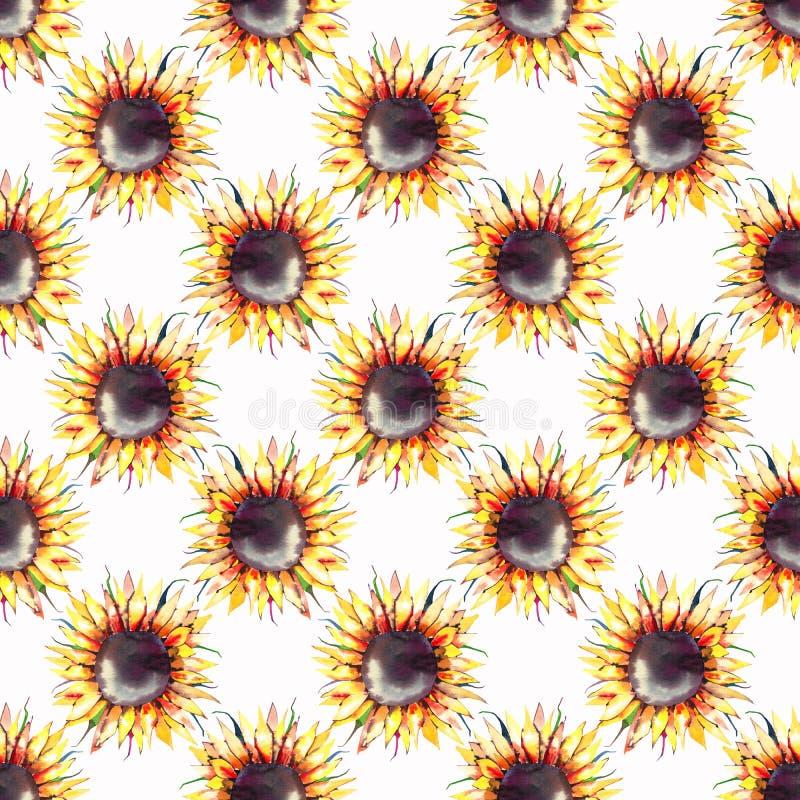 Modèle géométrique de beaux tournesols floraux de fines herbes jaune-orange colorés merveilleux graphiques lumineux d'automne illustration libre de droits