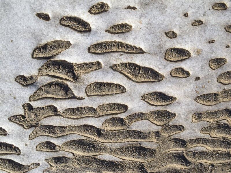Modèle gelé de sable et de glace. photo stock