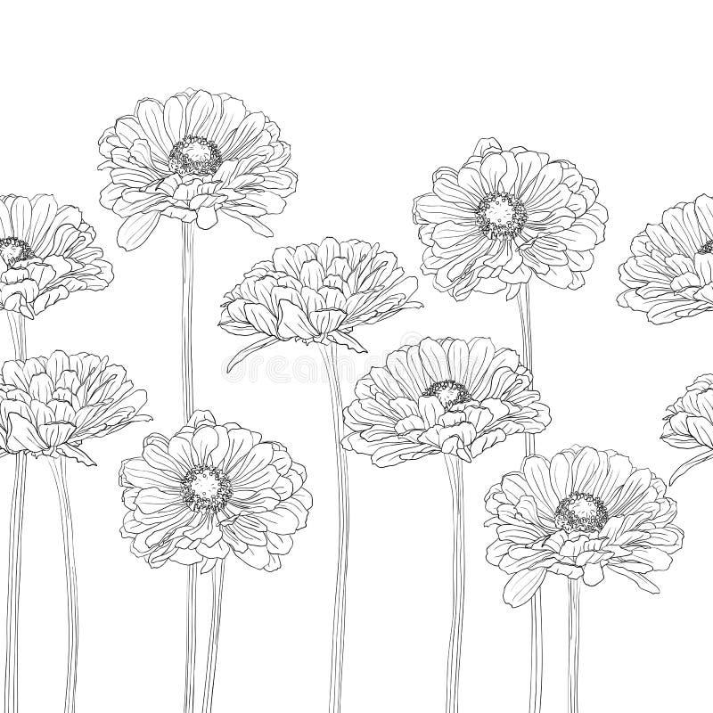 Modèle horizontal sans couture avec des fleurs de gerbera illustration de vecteur