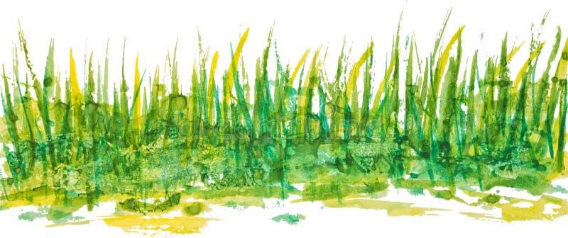 Modèle linéaire d'herbe d'aquarelle illustration stock