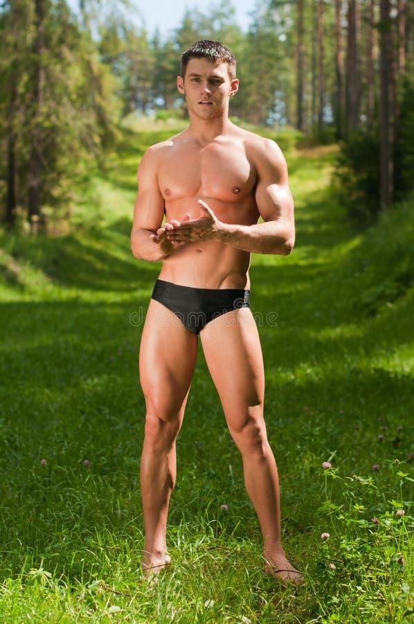 Modèle mâle dans la forêt photos libres de droits