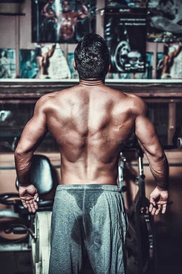 Modèle masculin musculeux montrant le sien arrière photo stock