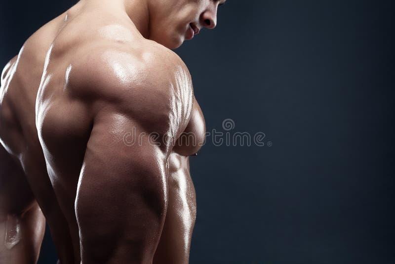 Modèle masculin musculeux montrant le sien arrière images stock