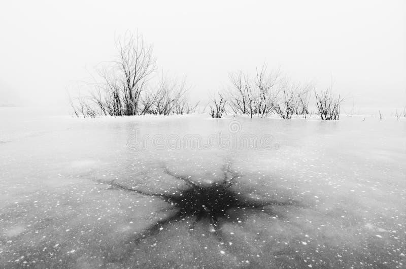 Modèle naturel de glace de neurone sur le lac congelé images stock