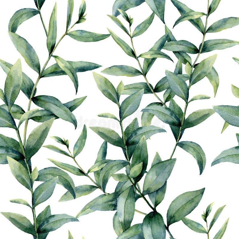 Modèle réaliste d'eucalyptus d'aquarelle Ornement sans couture floral peint à la main d'isolement sur le fond blanc nature illustration stock