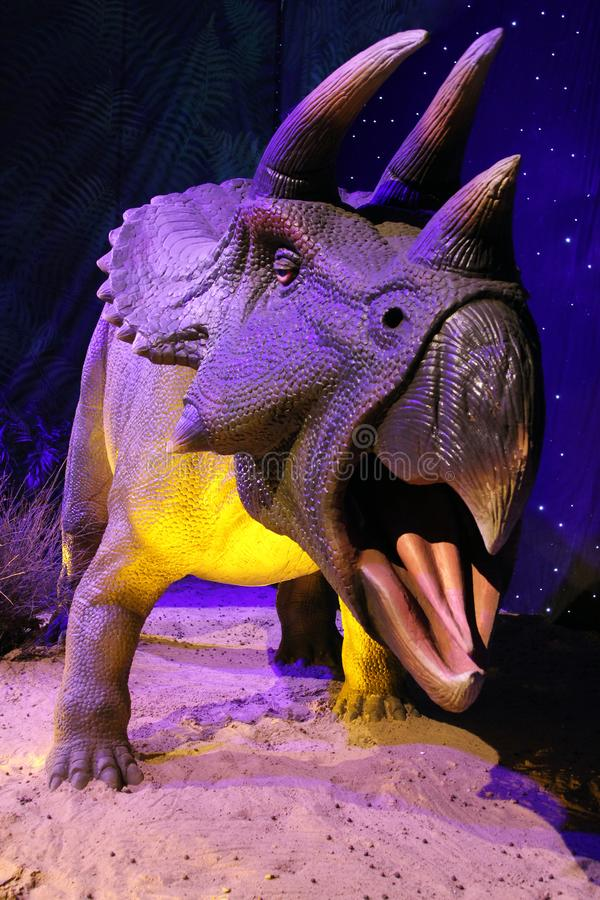 Modèle réaliste de Triceratops image libre de droits