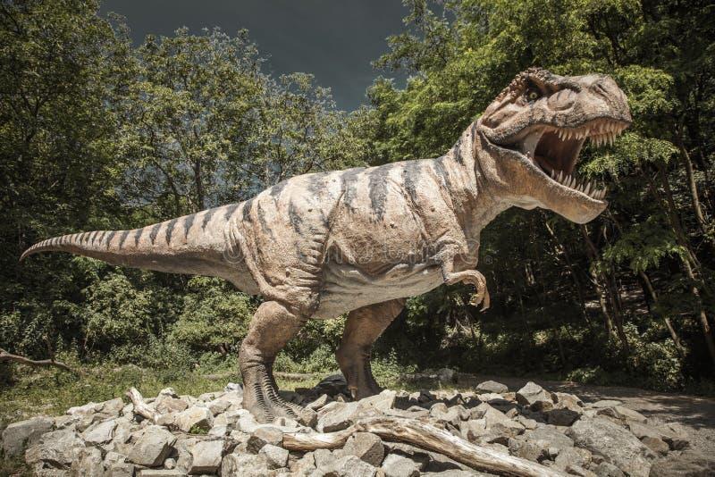 Modèle réaliste de tyrannosaure Rex de dinosaure images stock