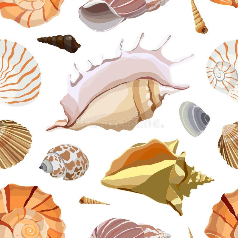 Modèle réglé de Shell illustration de vecteur