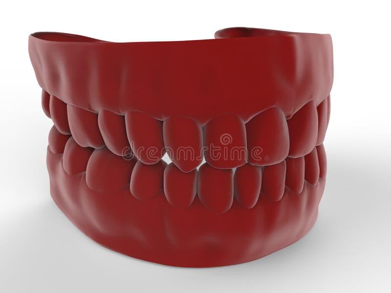 Modèle rouge de dentier illustration libre de droits