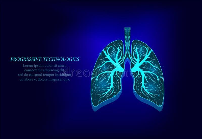 Modèle sain de médecine des poumons 3d bas poly Technologies progressives Les poumons humains ont des veines et de divers nerfs T illustration stock