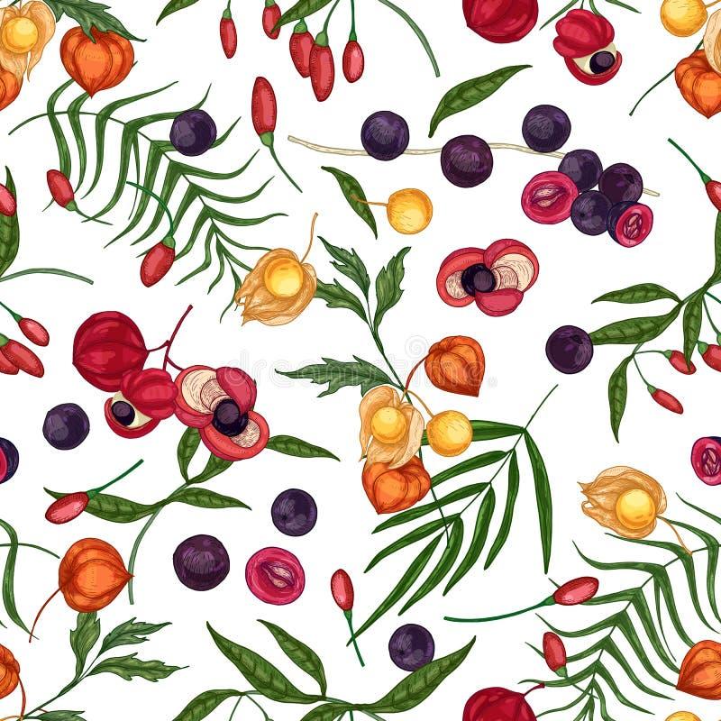 Modèle sans couture élégant avec le goji, l'acai, le guarana, les fruits de physalis et les baies frais sur le fond blanc Context illustration de vecteur