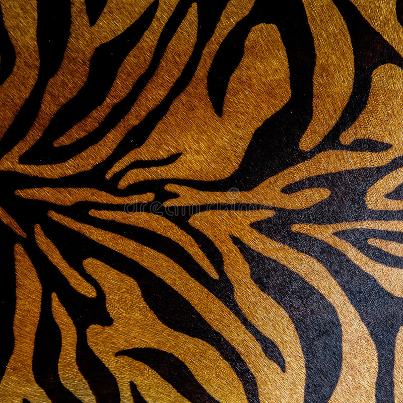 Modèle sans couture animal d'impression abstrait Zèbre, rayures de tigre Texture de répétition rayée de fond Conception de tissu photographie stock