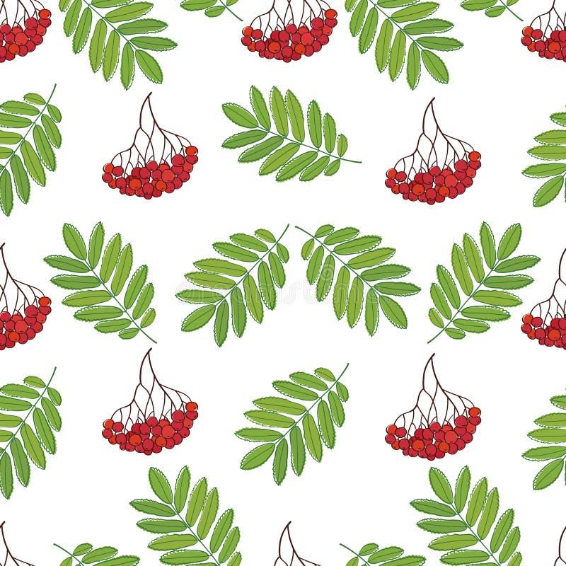 Modèle sans couture avec des baies et des feuilles de sorbe pour le textile, les papiers peints, le papier cadeau et l'album illustration stock