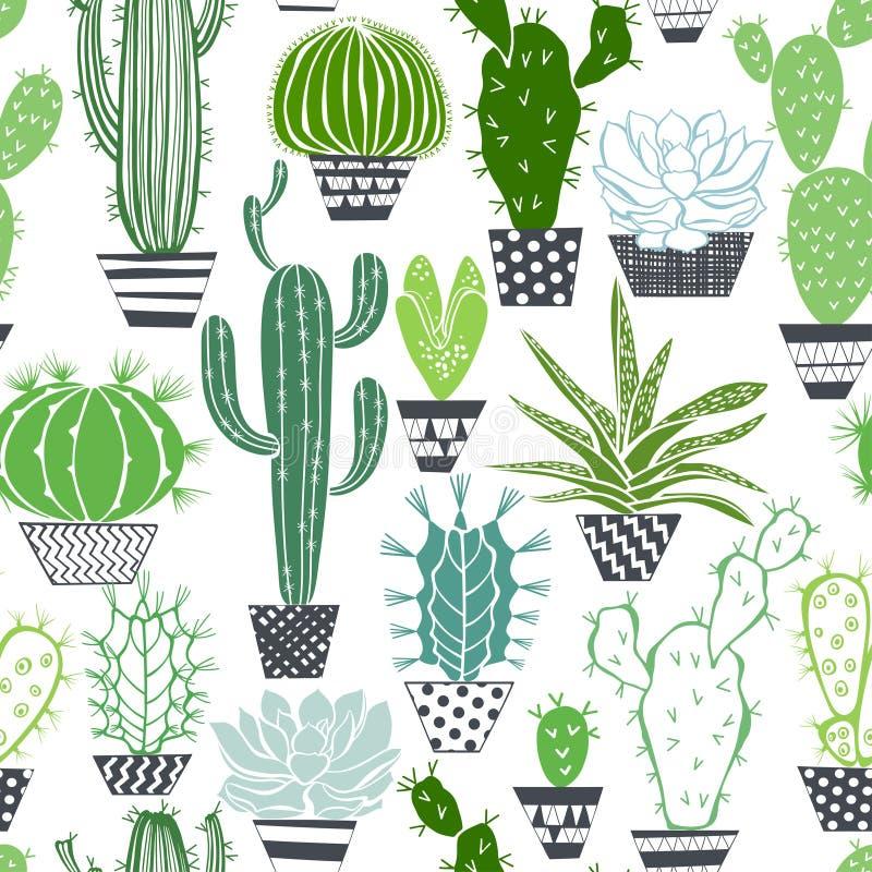 Modèle sans couture avec des cactus et des succulents illustration libre de droits