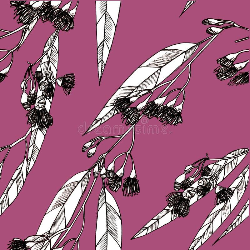 Modèle sans couture avec des eucalipts dessins image libre de droits