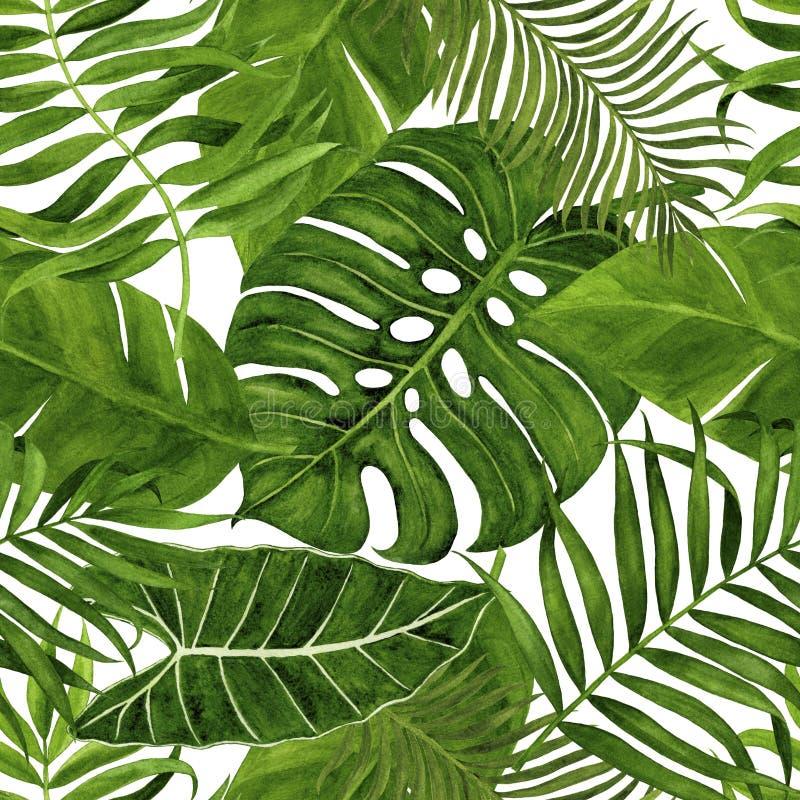 Modèle sans couture avec des feuilles pour le tissu, le papier peint, le papier d'emballage, etc. Aquarelle tropicale de feuilles illustration de vecteur