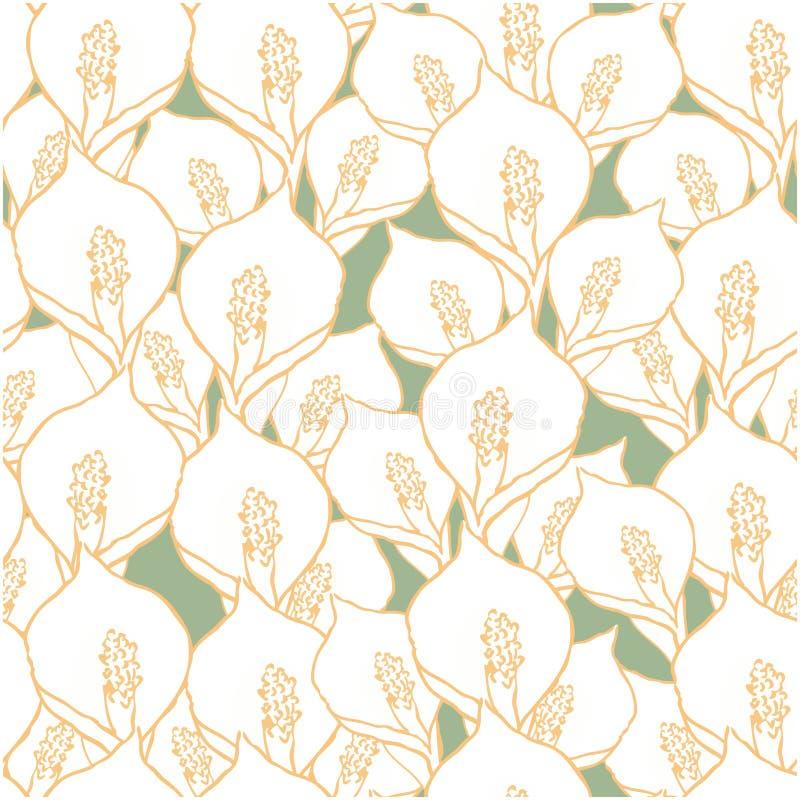 Modèle sans couture avec des fleurs de spathiphyllum sur le vert illustration stock