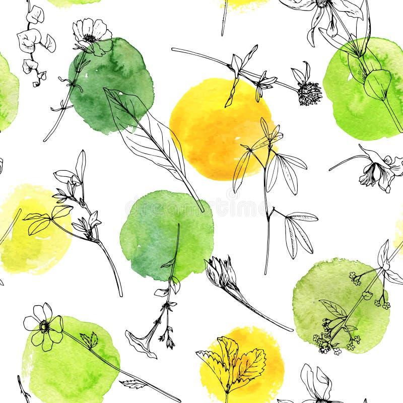Modèle sans couture avec des herbes et des fleurs illustration libre de droits