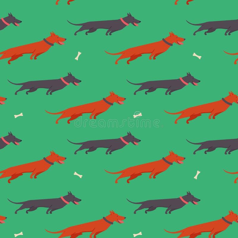 Modèle sans couture avec des icônes des teckels Fond simple avec le chien mignon de famille illustration de vecteur