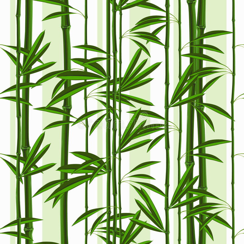 Modèle sans couture avec des plantes tropicales en bambou et des feuilles illustration libre de droits