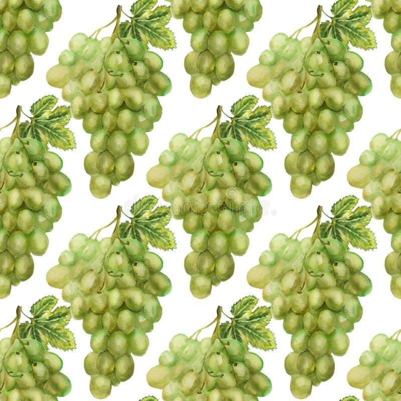 Modèle sans couture avec du raisin vert illustration libre de droits