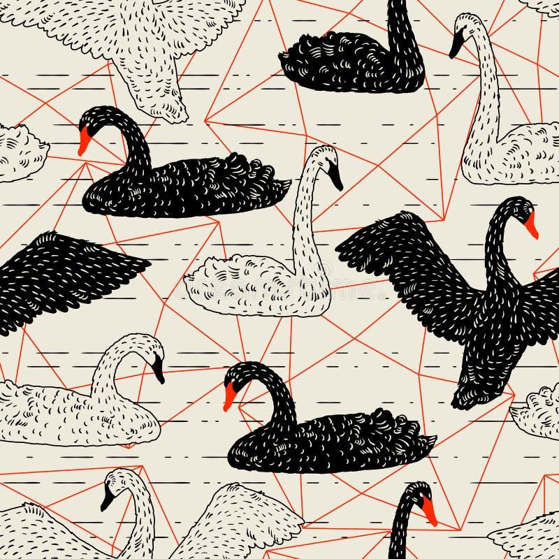Modèle sans couture avec flotter les cygnes noirs et blancs Oiseaux tirés par la main illustration libre de droits