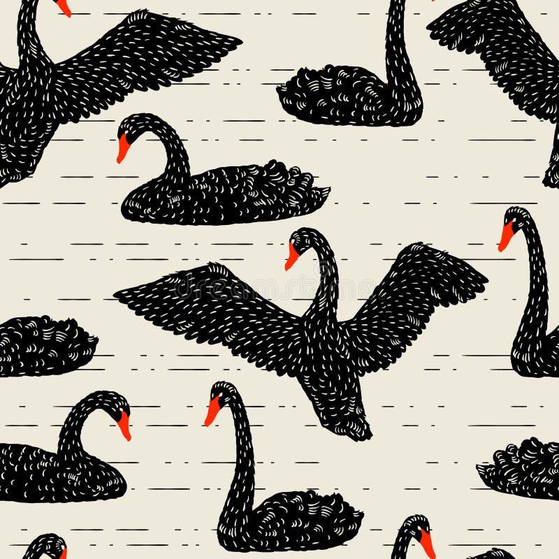 Modèle sans couture avec flotter les cygnes noirs Oiseaux tirés par la main illustration de vecteur