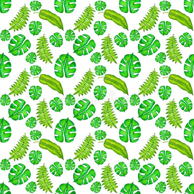 Modèle sans couture avec l'aquarelle, feuilles tropicales tirées par la main ?t?, fond abstrait illustration stock