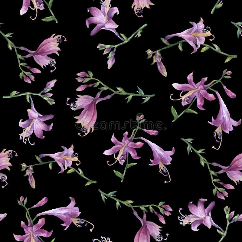 Modèle sans couture avec la branche de la fleur pourpre de hosta lis Mineur de ventricosa de Hosta, famille d'asparagaceae illustration de vecteur