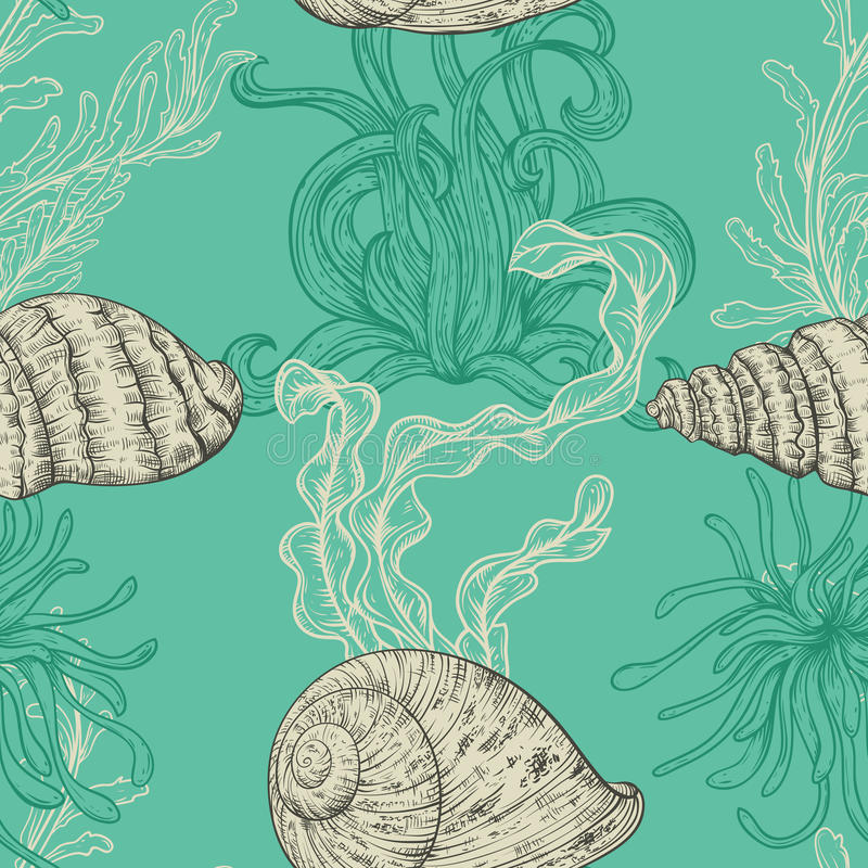 Modèle sans couture avec la collection de coquilles de mer, d'usines marines et d'algue illustration stock