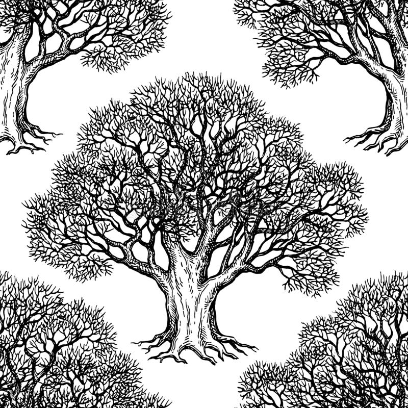 Modèle sans couture avec le chêne illustration stock
