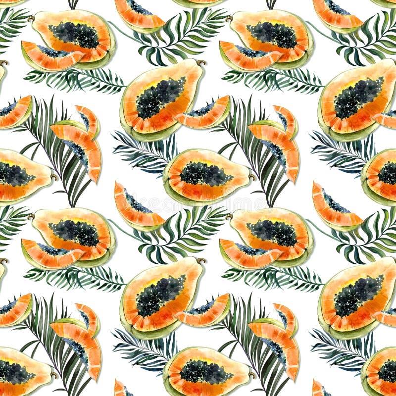 Modèle sans couture avec le fruit exotique lumineux de papaye et palmettes sur le fond blanc La papaye mûre avec les graines noir illustration stock