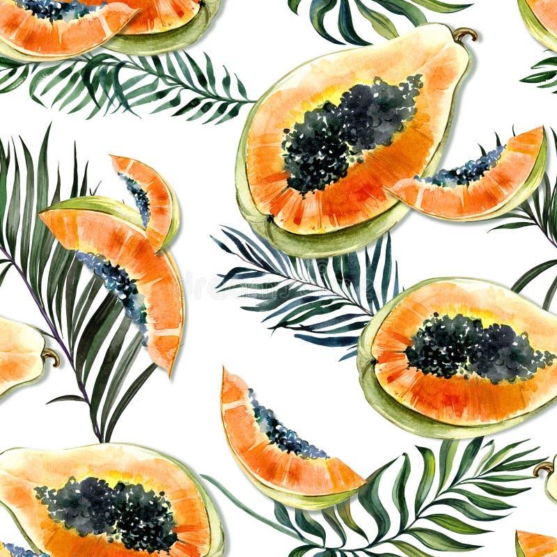 Modèle sans couture avec le fruit exotique lumineux de papaye et palmettes sur le fond blanc La papaye mûre avec les graines noir illustration libre de droits