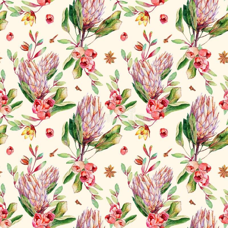 Modèle sans couture avec le protea et les roses de rose d'aquarelle illustration stock