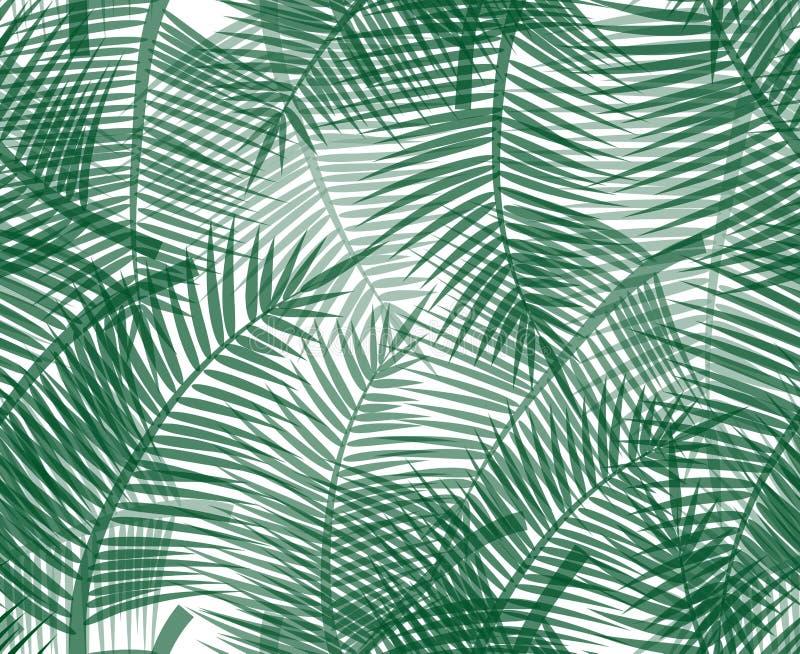 Modèle sans couture avec les brindilles vertes de paume illustration de vecteur