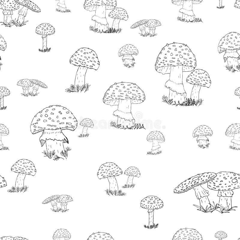 Modèle sans couture avec les champignons tirés par la main sur le fond transparent photos stock