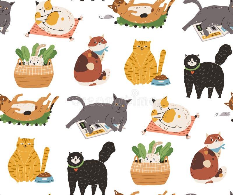 Modèle sans couture avec les chats drôles mignons dormant, lavant, s'étirant, jeu, se cachant Contexte avec adorable illustration de vecteur
