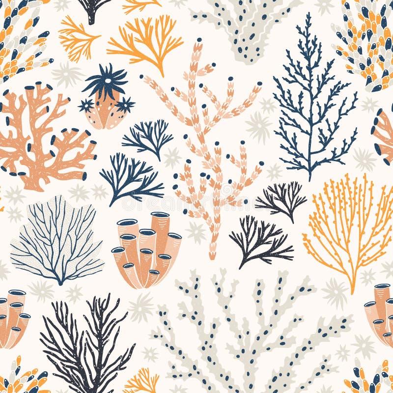 Modèle sans couture avec les coraux et l'algue ou les algues sur le fond blanc Contexte avec des espèces exotiques de fond de la  illustration stock