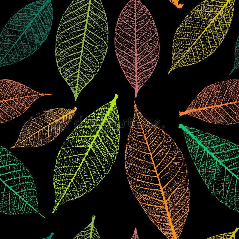 Modèle sans couture avec les feuilles squelettiques Fond d'automne Illustration de vecteur illustration libre de droits