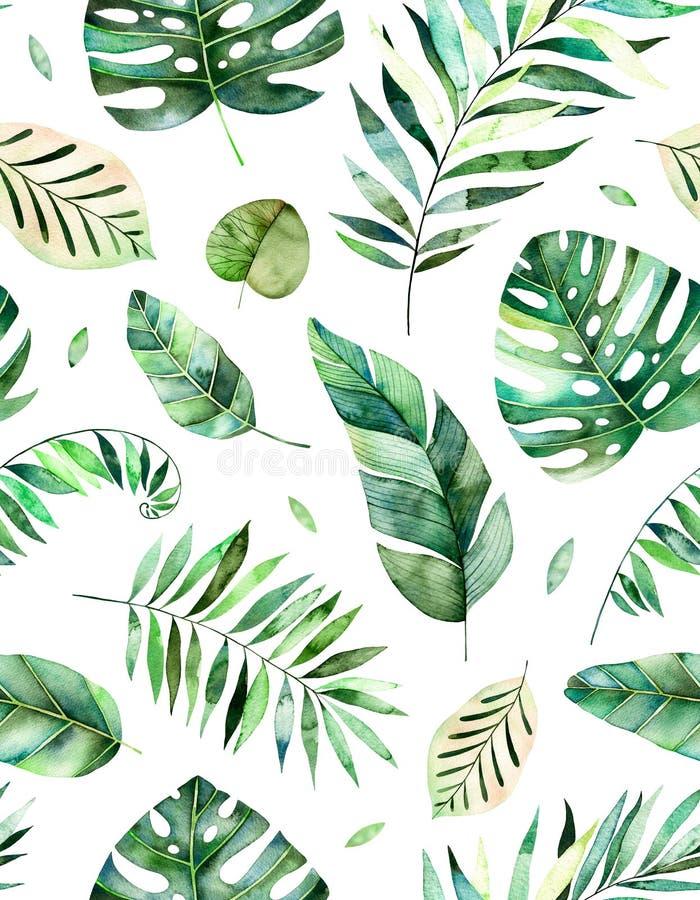 Modèle sans couture avec les feuilles tropicales d'aquarelle peinte à la main de haute qualité illustration libre de droits