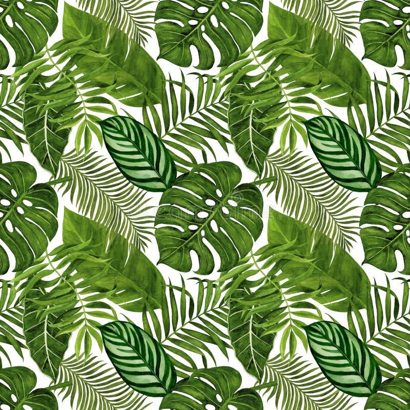 Modèle sans couture avec les feuilles tropicales pour le tissu, le papier peint, le papier d'emballage, etc. Aquarelle tropicale  illustration stock