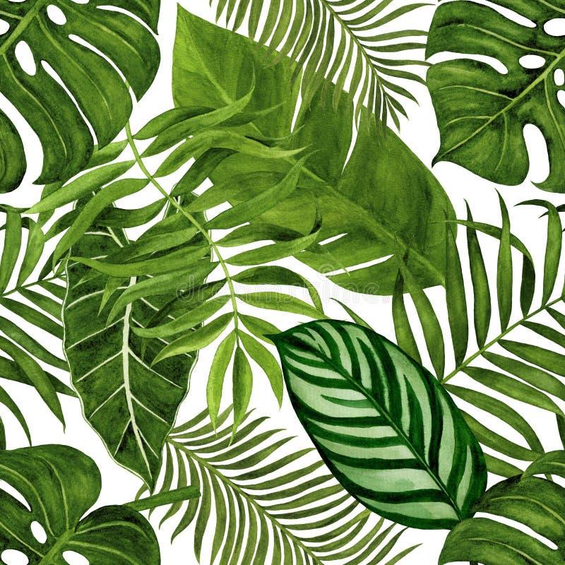 Modèle sans couture avec les feuilles tropicales pour le tissu, le papier peint, le papier d'emballage, etc. Aquarelle tropicale  illustration libre de droits