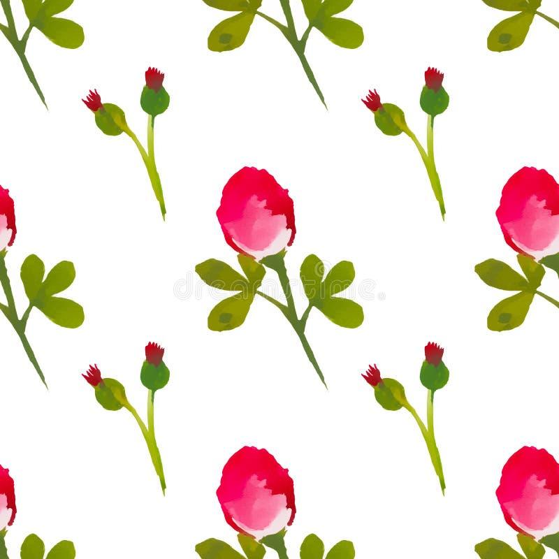 Modèle sans couture avec les fleurs rouges d'aquarelle Fond blanc illustration libre de droits