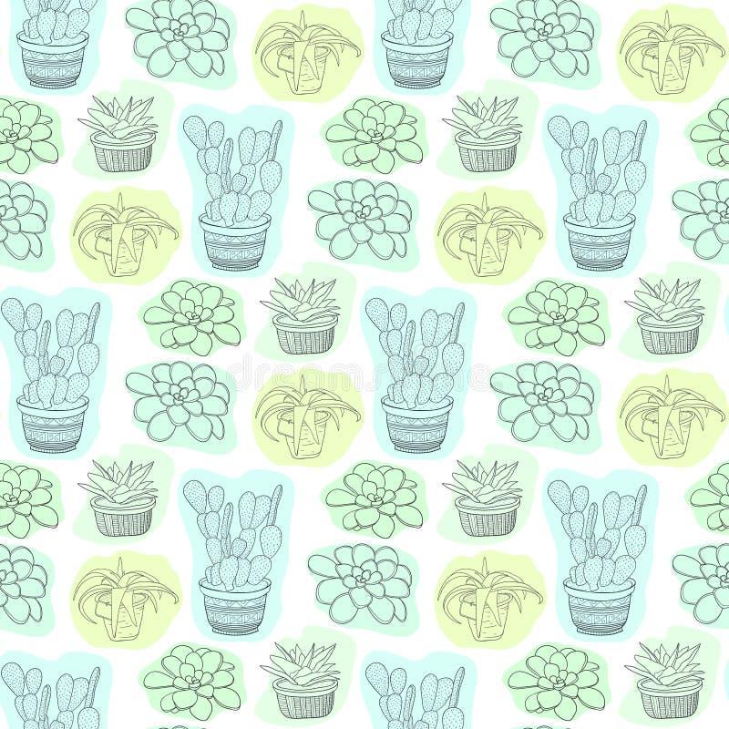 Modèle sans couture avec les fleurs succulentes dans des pots Fond floral de vecteur pour la conception de textile illustration libre de droits