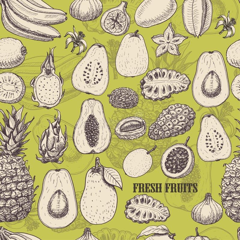 Modèle sans couture avec les fruits tropicaux sur le fond vert clair illustration stock