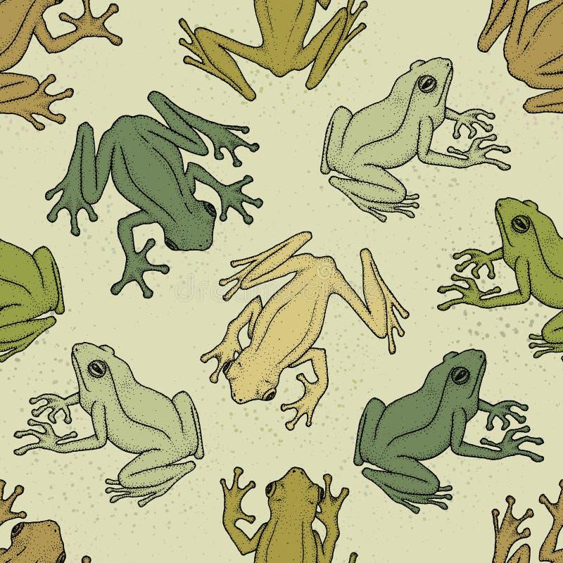 Modèle sans couture avec les grenouilles d'arbre asiatiques Illustration de vecteur illustration de vecteur