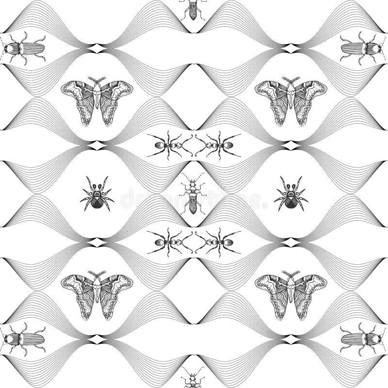 Modèle sans couture avec les papillons tirés par la main Collection entomologique de papillons tirés par la main fortement détail illustration libre de droits