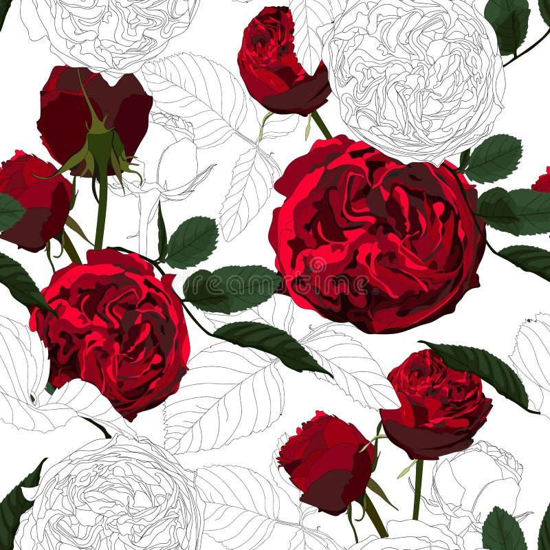 Modèle sans couture avec les roses rouges et les fleurs noires et blanches monochromes illustration de vecteur